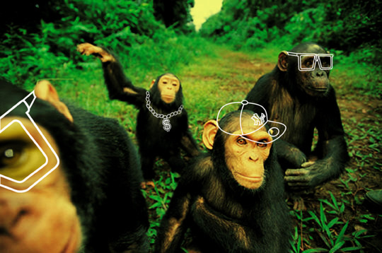 behaving rudely, what not to say at a potluck, how we're like chimps, avoid the rich,