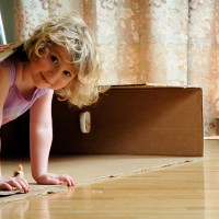1,000 Ways To Play With A Cardboard Box