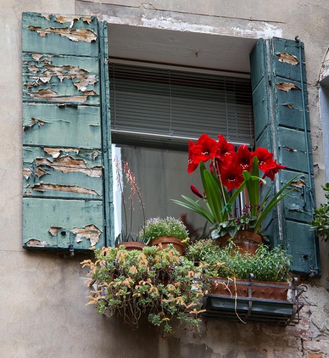 beauty heals, finding the positive, reversing urban decay, building a neighborhood,