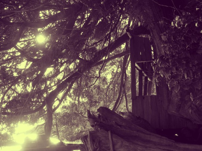 room of one's own, hidden worlds, secret places,