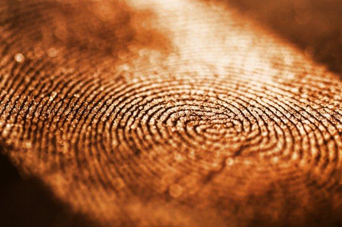 April tragedy, energy fingerprint, life energy,