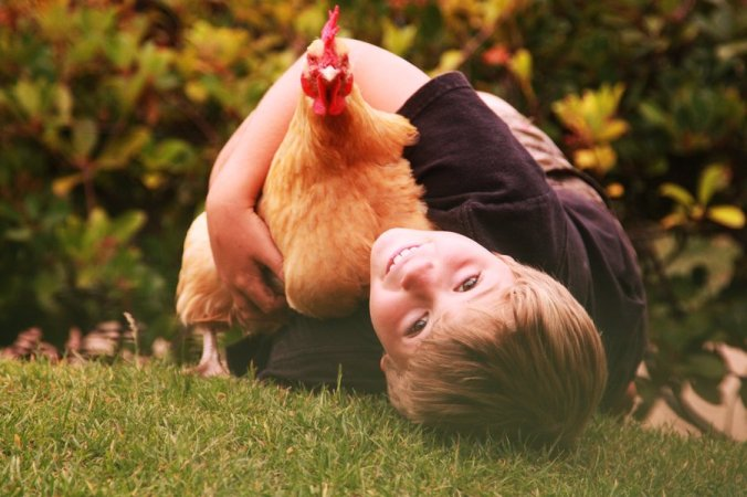 free range kids, free range learning,