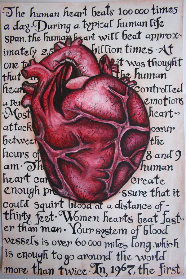 heart intelligence, heart as a brain,