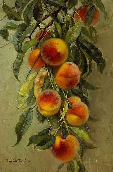 Peaches by Elizabeth Jaynes Borglum