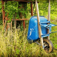 Battered Blue Wheelbarrow
